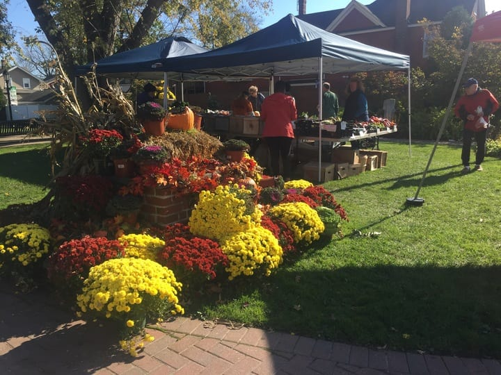 Farmers' Market Breathes Life into Quaint New York Village