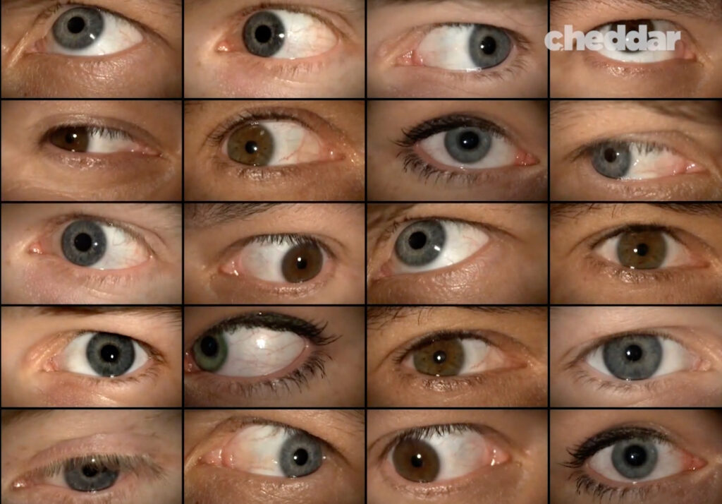 A Cheddar News live show screenshot with many eyes