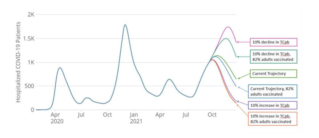 National hospitalization projection Jan. 2022